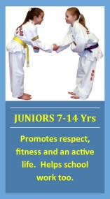 juniors icon 1